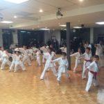 semaine-dexamen-karate-laval-18